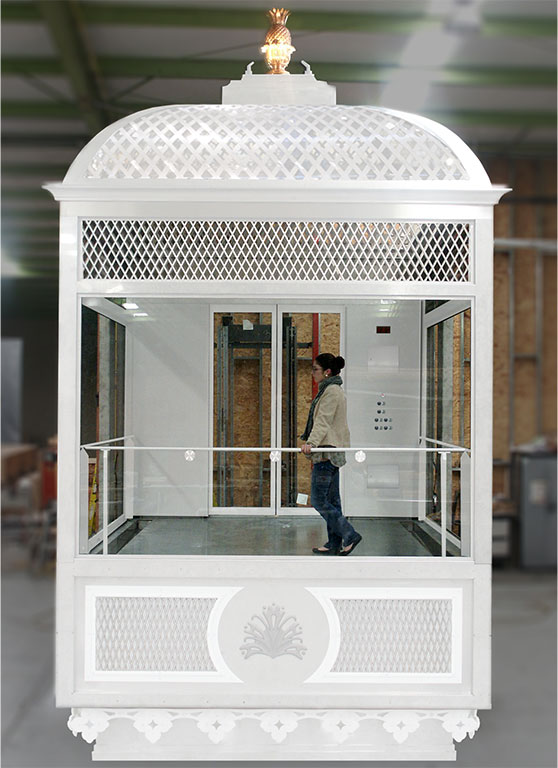 Best Residential cage elevator designed by Roys Rise